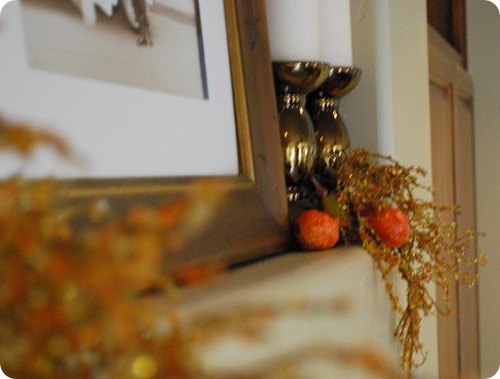 glitz and gourds