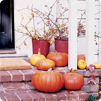 sunset porch pumpkins