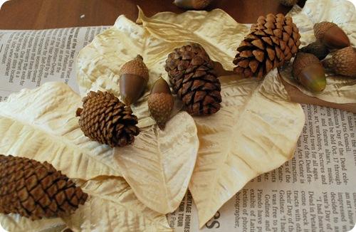 glue acorns