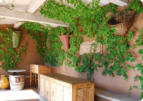outdor tasting room