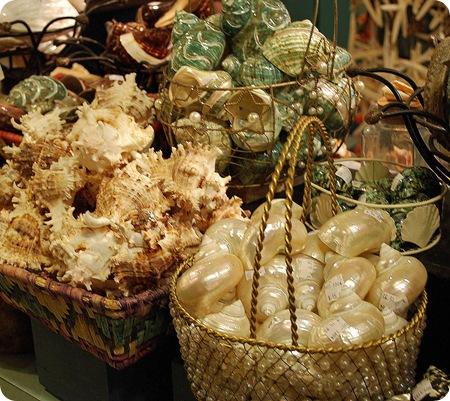 shell shop display