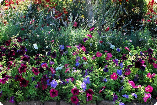 stunning gardens 3