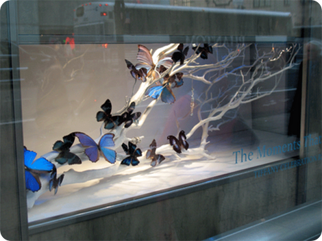 window at tiffany