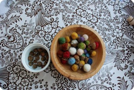 alexis acorns