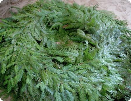 plain fresh wreath