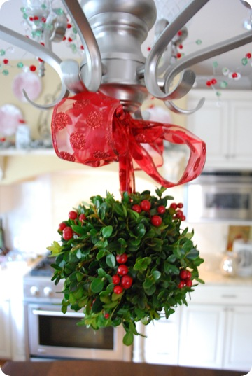 kissing ball in kitchen