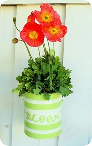 paint can planters