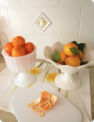 citrus in urns