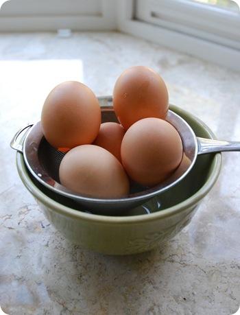 drain egg shells