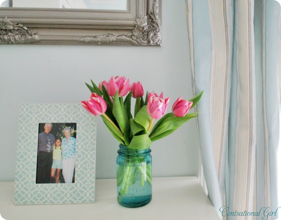 cg frame tulips curtain
