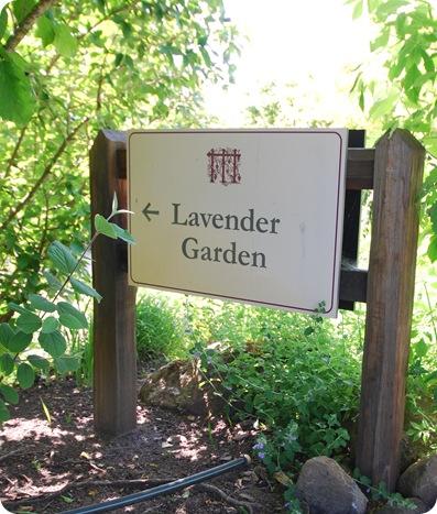 lavender garden sign