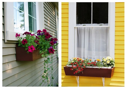 window boxes 2