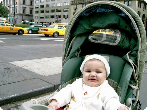 baby and taxis
