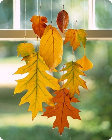 hanging leaves dipped in wax martha
