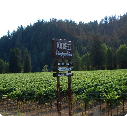 korbel sign in vineyard