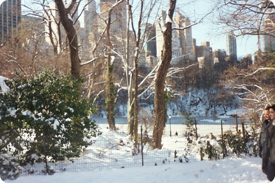 nyc photo0008