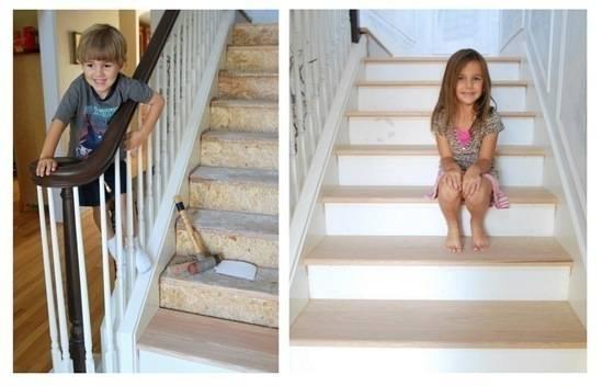 monkeys on steps