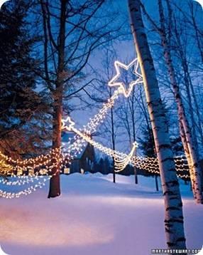 martha twinkle lights