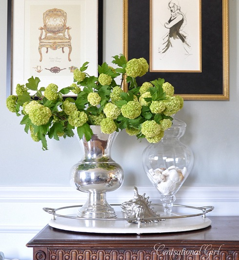 cg viburnum and vase