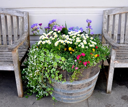 wine country flower barrel