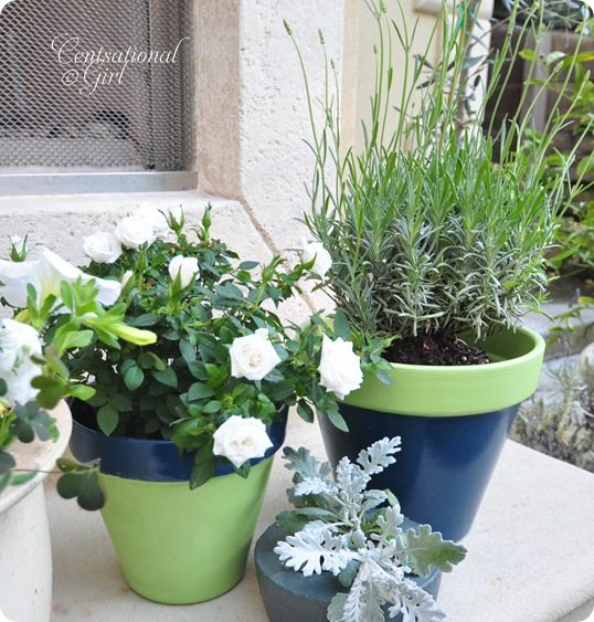 cg painted planters