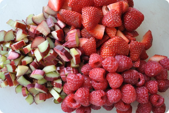 rhubarb raspberries strawberries