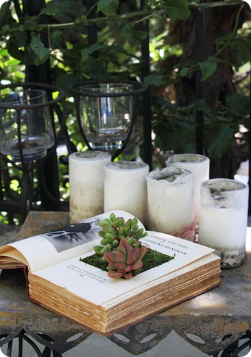 succulents in books via apt therapy