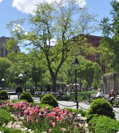 washington square in spring