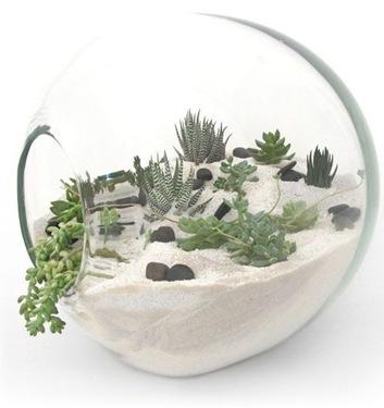 james modern bespoke terrarium