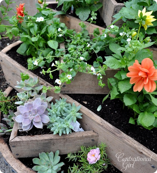 kate tiered barrel planter