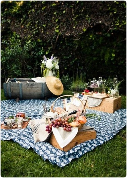picnic on lawn