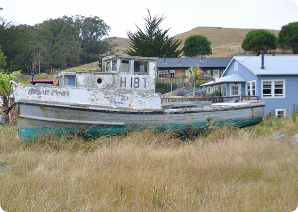 boat in grass
