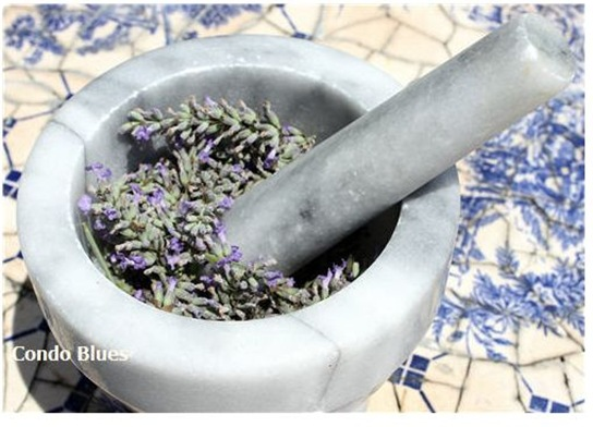 lavender essential oil condo blues