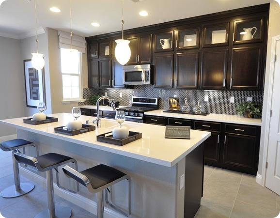 sleek black white kitchen