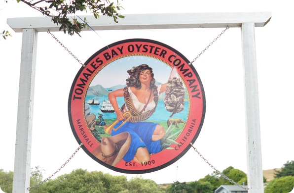 tomales bay oyster co