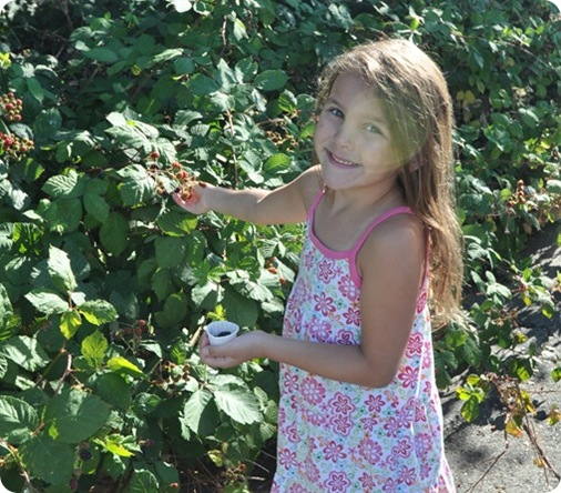 girl-picking-blackberries_thumb1