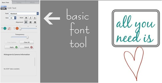 picasa basic font tool