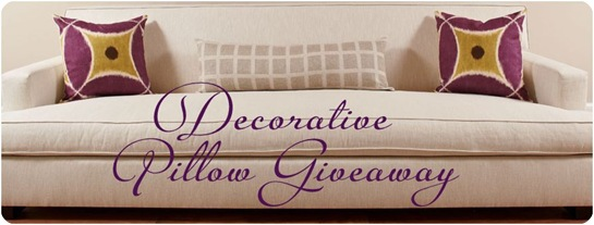decorative pillow giveaway sofa