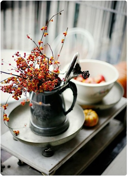 fall berry branches pinterest