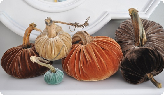 set of six plush pumpkins