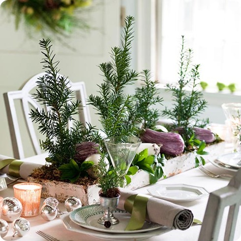 evergreen centerpiece bhg