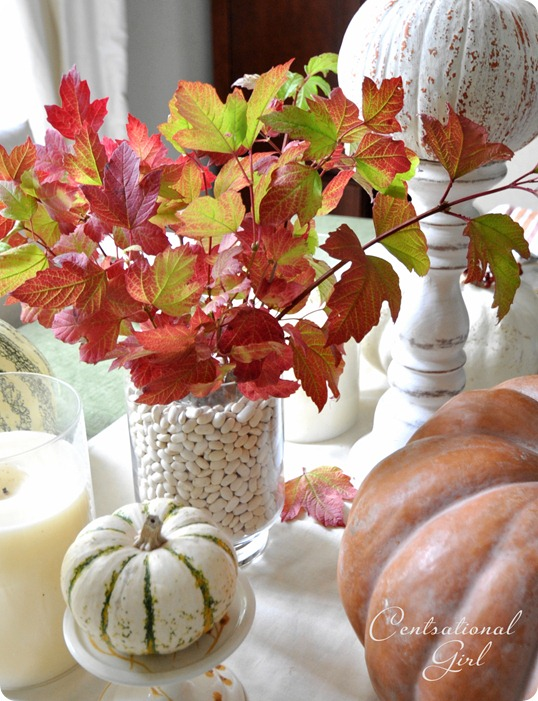 fall leaves on table