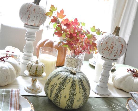 fall pumpkins on table cg