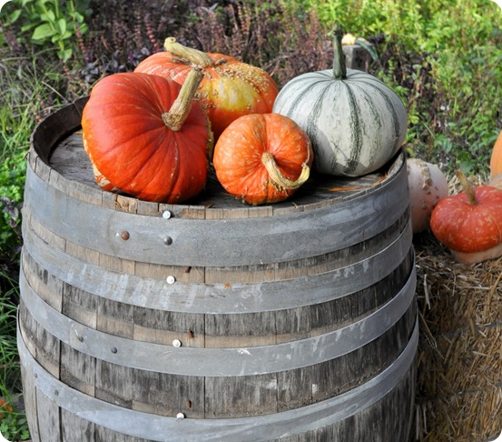 pumpkins on barrel