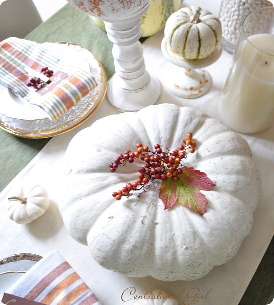 white pumpkin on table cg