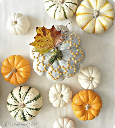 yellow split pea pumpkin cg