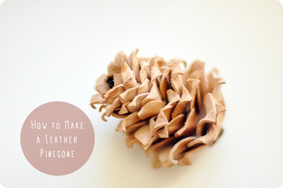 freshly picked leather pinecone