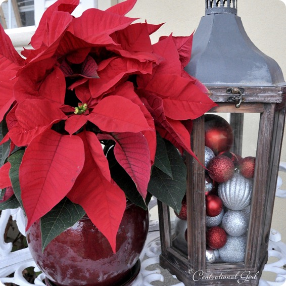 lantern with ornaments and poinsettas cg