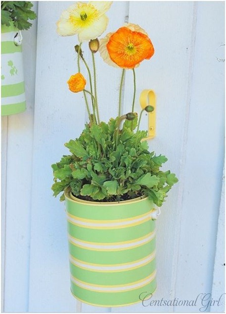 striped planter cg