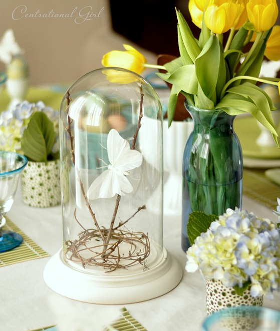butterfly under bell jar